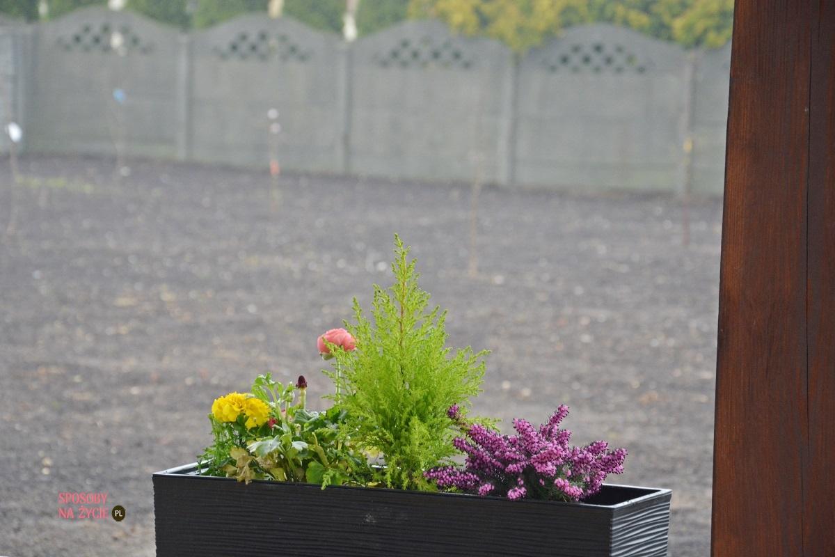 16 niesamowitych korzyści z posiadania ogrodu i pracy w ogrodzie